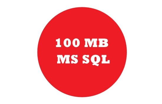 Picture of 100 MB MS SQL (1 year)