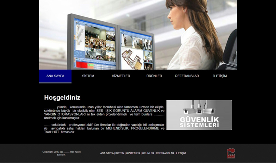 Picture of SECURITY SYSTEMS WEBSITE